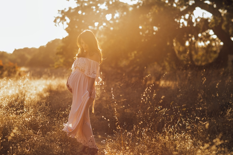 Sonoma Family Photography, pregnant woman in tall grass at sunset