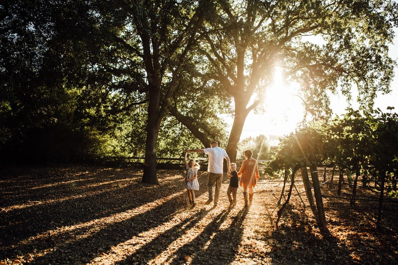 Sonoma Family Photography, family of 4 walking away from camera toward the sunset