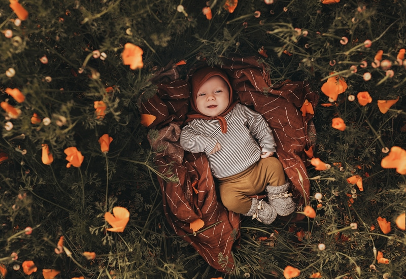 Sonoma Family Photography, little baby laying among flowers